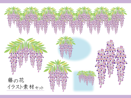 Wisteria flower illustration material set