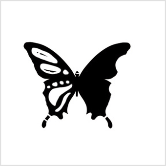 Butterfly background white