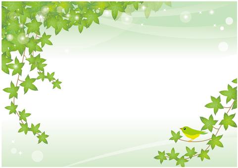 덩굴 잎과 작은 새의 배경