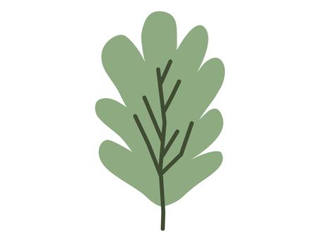 Green leaf plant 2