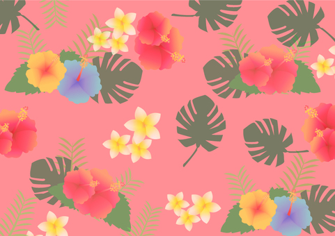 Summer background illustration tropical 01