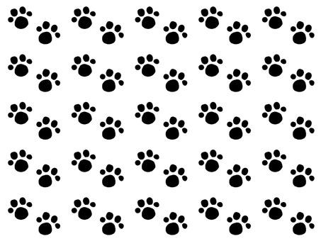 Cat footprint