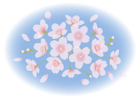 Cherry blossoms blur 2