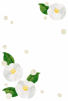 In cold sympathetic frame / white camellia