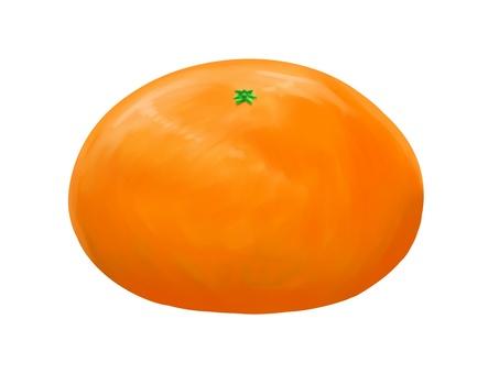 Watercolor style orange