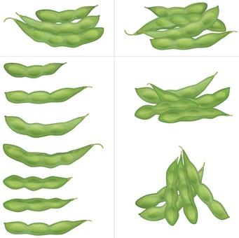 Edamame / legumes