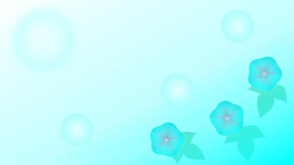 나팔꽃 (비온 아침의 풍경)