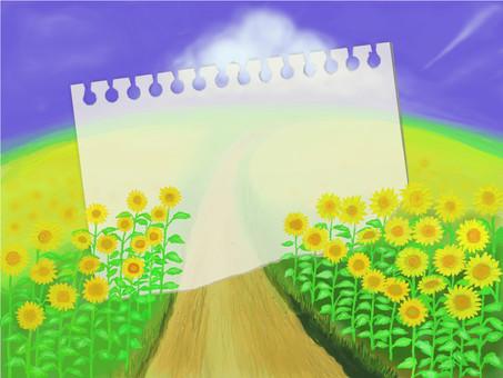 여름 풍경 해바라기의 언덕 · 스케치북