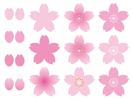 벚꽃 일러스트