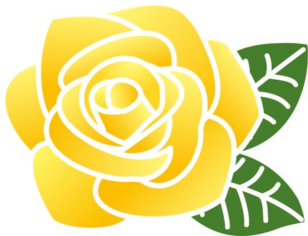 Rose _ yellow (line white