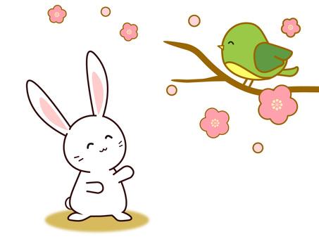 Usagi and Tousi