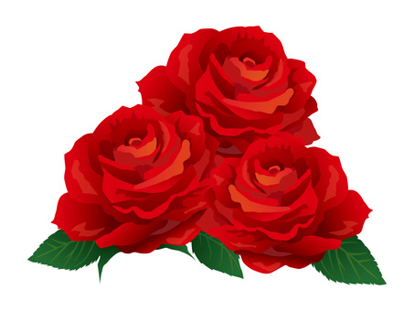 Red Roses 03