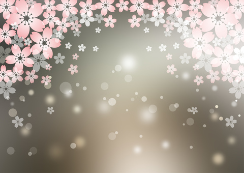 Sakura _ gray background