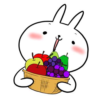 과일 바구니와 토끼 흰색