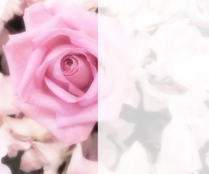 Flower message card 4-C