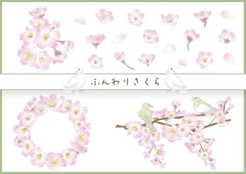 Fluffy Sakura