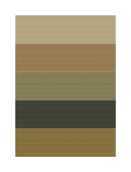 Wood grain tone 02