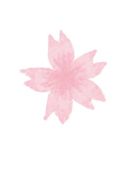 一棵淺櫻桃樹