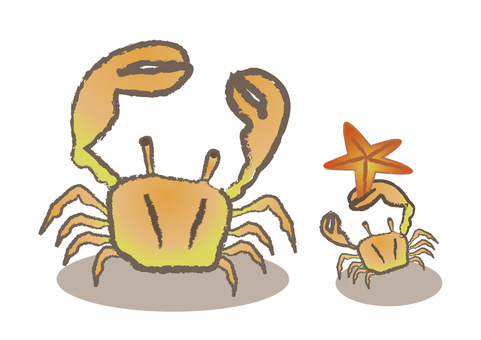 crab_ crab and starfish