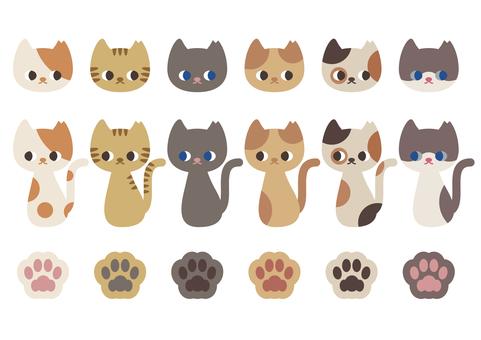 1912 6 kinds of cats _ Sakura cat female
