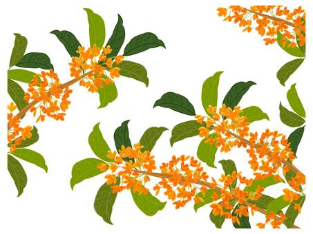 キンモクセイ 秋の風物詩