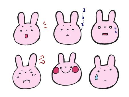 Rabbit's facial expression 1 of 2