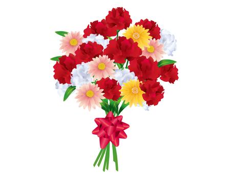 Carnation 07