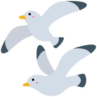 Seagull-01