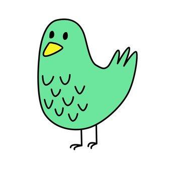 Blue bird 11