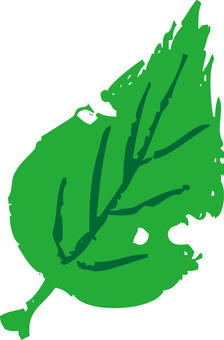 Leaf (worm eaten)