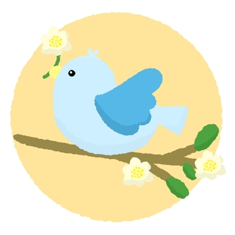 Blue bird perching on a branch