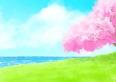 Sakura and the sea