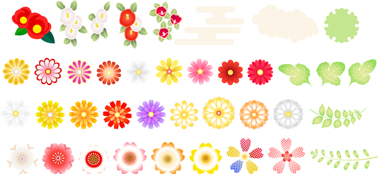 Camellia, chrysanthemum, cherry tree icon set