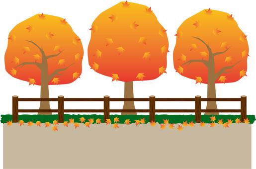 Promenade (autumn leaves)