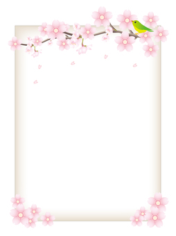 Cherry branches and frames of small birds