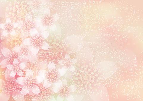 벚꽃의 꽃 161