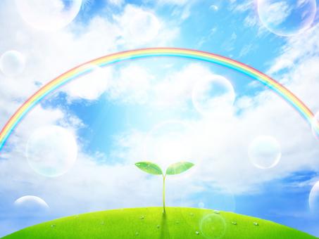 Soap bubble · Futaba · Shiba · Sun · Rainbow · Frame