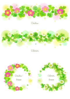 Oxalis and clover decoration frame