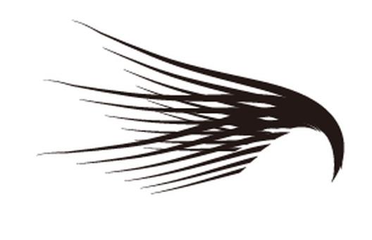 Wings 01_02