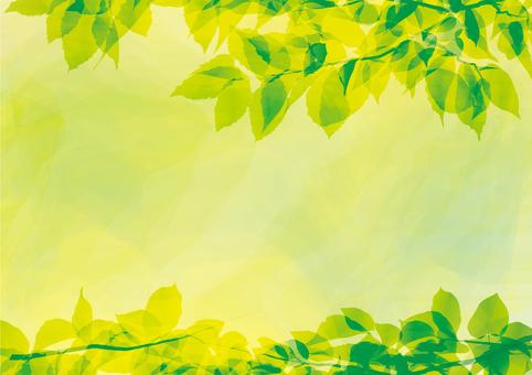 Leaf green frame framing decorative frame fresh green water color wind