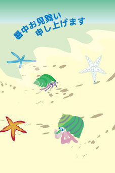The hot summer sightseeing of the scenery of the seaside of Hermit crab and starfish