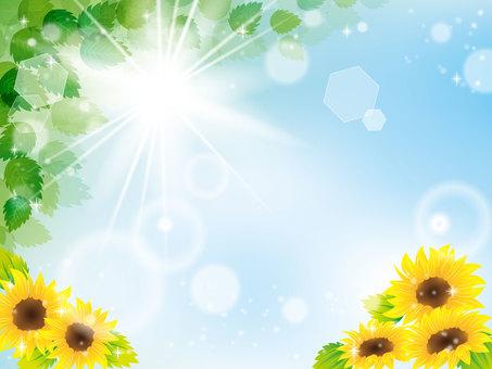 Summer image 030