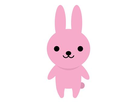 동물 토끼 토끼 서 포즈