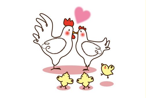chicken_ 닭 가족 5