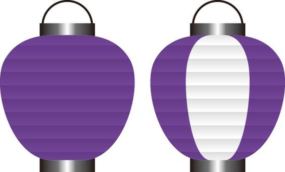 Lantern purple