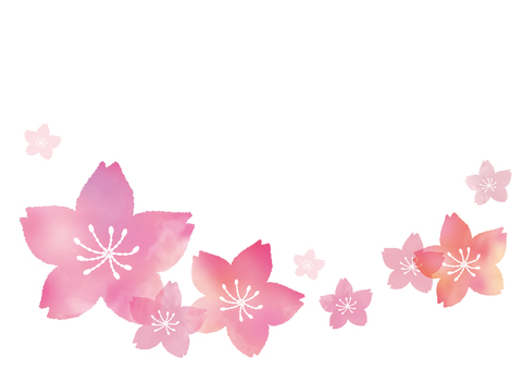 Cherry blossom frame with tear-drop picture