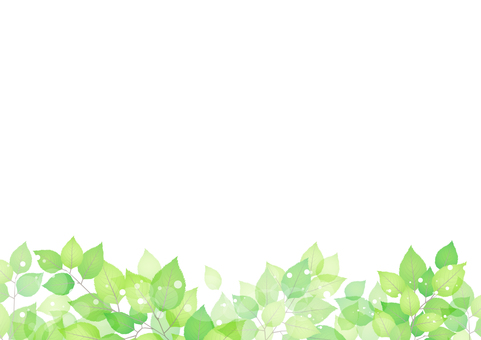 Fresh green material 224
