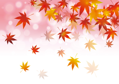 Autumn leaves _ Background 01