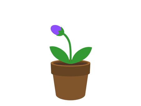 Flower pot and bud flower (purple)