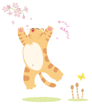 Wow, spring is it! Cat catch illustration